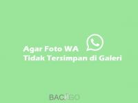 Agar Foto WhatsApp Tidak Tersimpan di Galeri